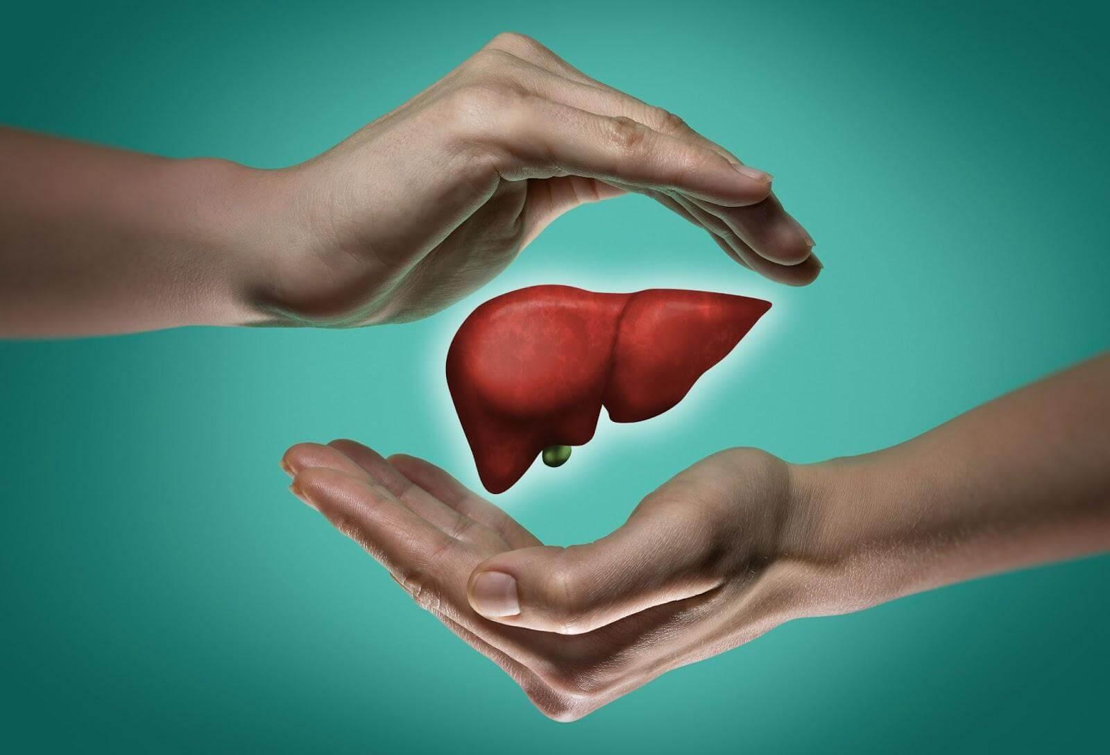 顧肝保健食品有哪些?